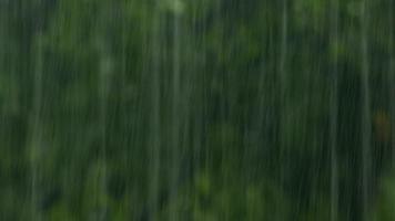 aguaceiros de verão, tempestade forte