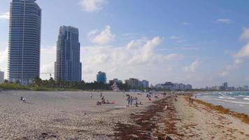 USA miami south beach pier panorama 4k florida video