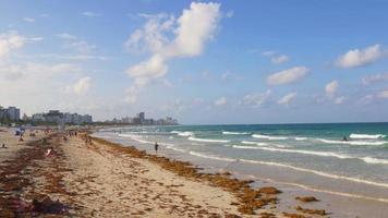USA tramonto miami south beach pier panorama 4k florida video