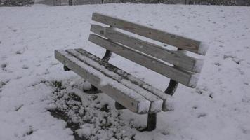 una panchina nel parco durante la tempesta di neve video