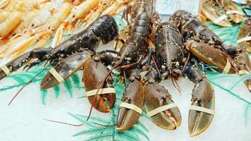 mariscos - grandes langostas y cangrejos en el mercado de mostrador popular entre los turistas la boqueria, españa video