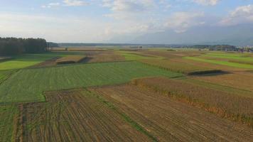 Antenna 4K: terreno agricolo in autunno