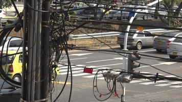 cables de postes de servicios públicos y cables eléctricos