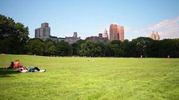 Parque cenral relajarse lugar 4k lapso de tiempo de la ciudad de Nueva York video