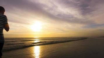 che cammina sulla spiaggia all'alba