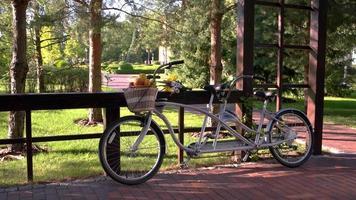 bicicleta com cesta de frutas.