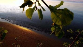 camminando lungo la riva di un grande lago. bellissimo tramonto sul lago.