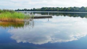 lago azul com junco no verão. superfície da água video