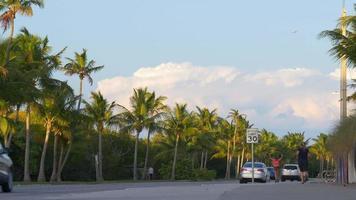 eua verão dia kew oeste sunset bay tráfego estrada 4k florida