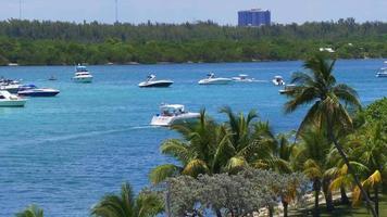 Estados Unidos verano día miami beach gulf yacht traffic park 4k florida