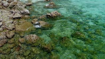 Waves splashing the rocks