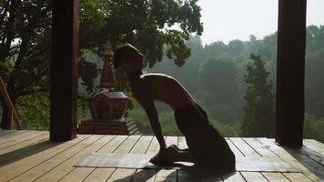 yogi sur la plate-forme en bois devant et tiré