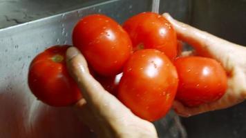 Las manos del hombre lavan tomates.
