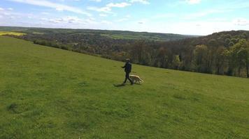 foto aérea de homem maduro com cachorro em caminhada no campo video