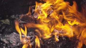 fuoco di immondizia in botte di acciaio