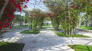 parque moderno de miami beach video