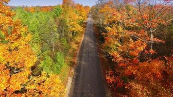 Flying down rural road amid colorful autumn treetops video