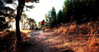 mountain biker in sella a una pista forestale su un sentiero video