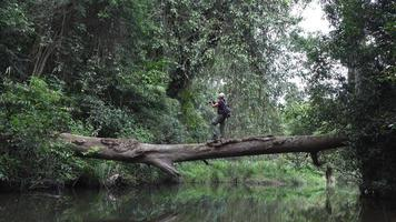 uomo che cattura foto e attraversa il fiume sull'albero caduto nella giungla