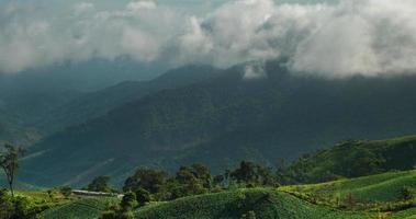 nuvola e nebbiosa mattina sulla montagna