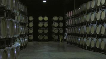 embotellador burdeos saint emilion video