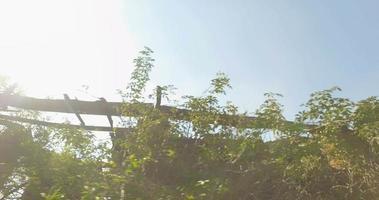 casa de campo abandonada y rayos de sol video