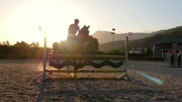 haie de saut de cheval au coucher du soleil,