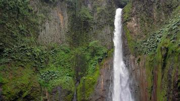 vista da cachoeira la fortuna em uma floresta, província de alajuela, costa rica video