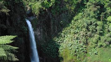 Vue grand angle de la cascade de la fortuna dans une forêt, province d'Alajuela, Costa Rica