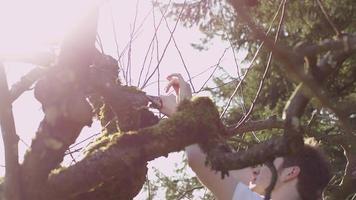 Jeune homme élagage de petites branches d'un arbre