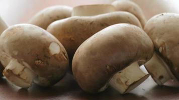 champignon cru video