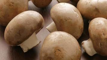 champignons crus video