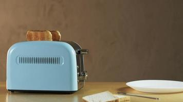 Man Puts Two Loaves of Bread Into an Electric Toaster video