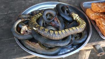 varie specie di serpenti fritti da vendere al mercato di strada