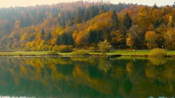 4k aéreo: coche en la orilla en otoño paisaje del lago video