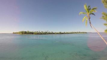 vista aérea de uma ilha tropical com uma palmeira em primeiro plano - tetiaroa, taiti, polinésia francesa