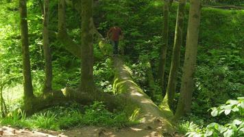 Hombre cruzando un extraño árbol puente en el jardín botánico de Batumi