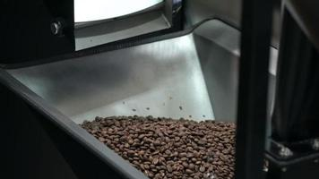 grãos de café torrados em uma torradeira de café