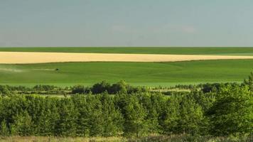trattore che lavora sul campo dell'agricoltura di fieno raccolto di fertilizzanti