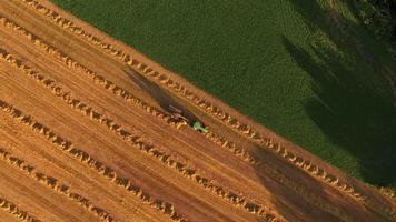 Farm Tractor and Machinery Harvesting Hay in Late Evening Light video