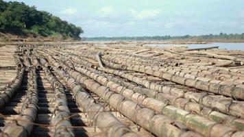 des tas de poteaux de bambou flottant sur la rivière