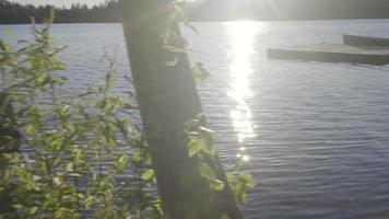 barca da pesca su un piccolo lago canadese in ontario rilassanti vacanze estive video