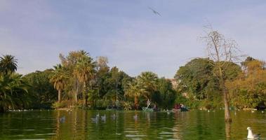barcelona día soleado parque estanque barco montar 4k españa