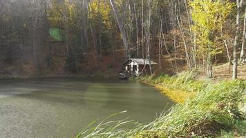 ain com sol sobre o lago da floresta video