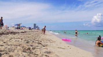 Usa miami summer sunny day ocean beach life 4k florida video