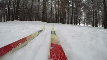 concetto inverno natale foresta. sci di fondo in una giornata invernale nevosa. pov