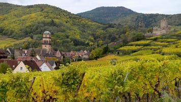 Alsace Vineyard Kaysersberg France video