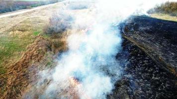 Vue aérienne de l'herbe sèche brûlant dans la steppe