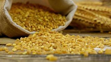Körner des goldenen Weizens in einem Sack, der auf dem alten hölzernen Hintergrund verschüttet wird