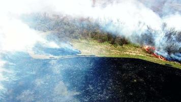 Aerial view of dry grass burning in steppe